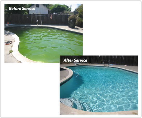 Pool Cleaning In Houston : Green pool click here